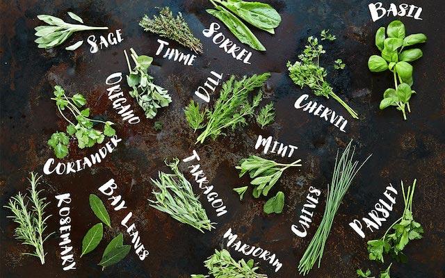 Ароматные травы и специи