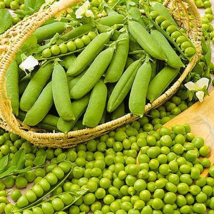 Горох овощной Овощное чудо, Украина
