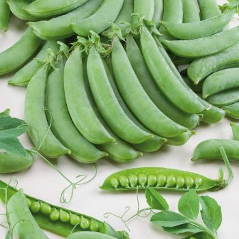 Горох овощной Алоха 10 гр.