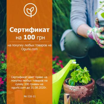 Сертификат универсальный на 100 грн на покупку любых товаров
