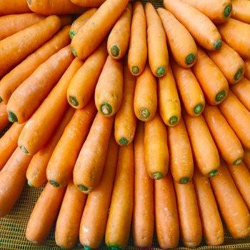 Морковь Абако F1, Seminis, Голландия