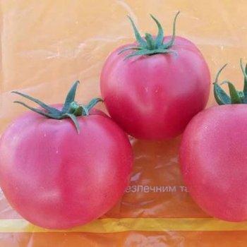 Хапинет 10 с томат