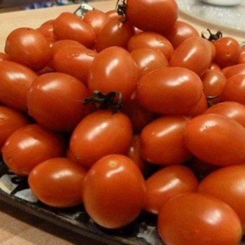 Томат Классик, сливка, ранний, семена, 100 шт, Nunhems, Голландия